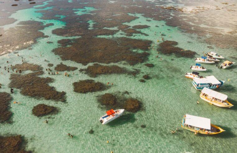 Praias de Maragogi: as 05 melhores da região
